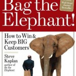 You Need to Bag the Elephant: Your Business Depends on it