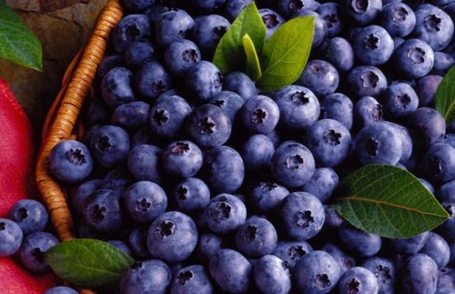 blueberry-juice
