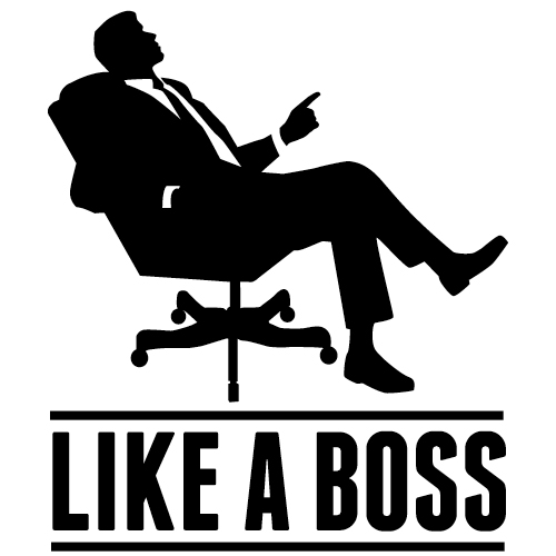 Complete Guide to Organizing your Finances Like a BOSSLike A Boss Logo Wallpaper