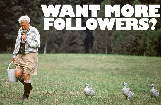 want-more-followers