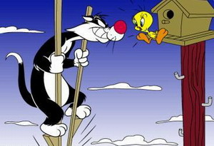 Tweety-Bird-and-Sylvester (3)