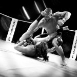 How Mixed Martial Arts Can Save Your Business