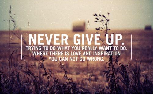 beautiful-never-never-give-up-quote-summer-Favim.com-311252