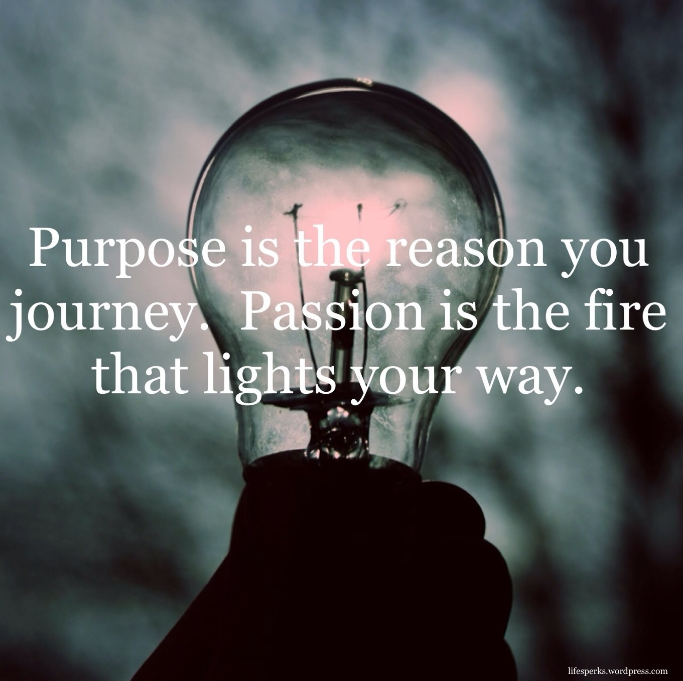 purpose-and-passion