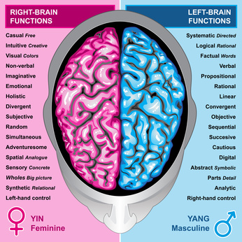 left brain vs right brain research paper This paper reflects the research and thoughts of a student at the time the  the  idea that the left and right sides of the brain can control many different  in left  vs right brain modes, a direct comparison is presented in several categories.